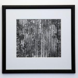 Lisa Him Jensen | Wetlands