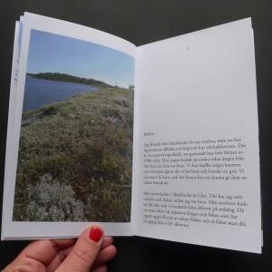 Petra Rahm   En guide till Skärblacka